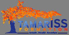 Tamaris formation
